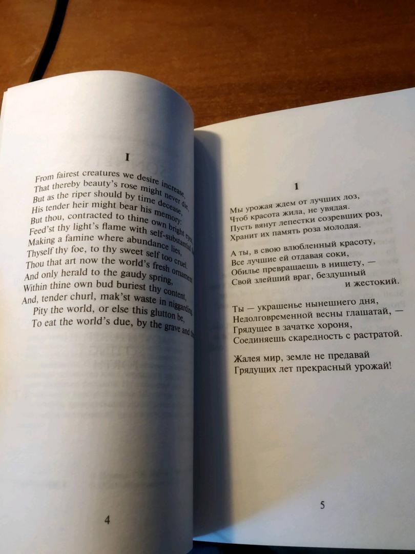 Иллюстрация 20 из 21 для Сонеты - Уильям Шекспир   Лабиринт - книги. Источник: Иванова Яна