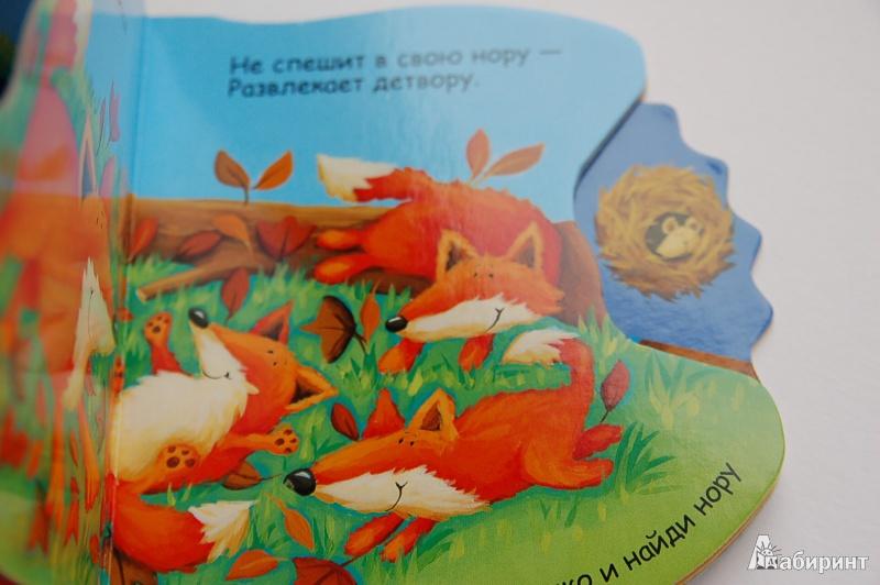 Иллюстрация 9 из 18 для Где живет сова? - Татьяна Хабарова | Лабиринт - книги. Источник: Буланцева Аня