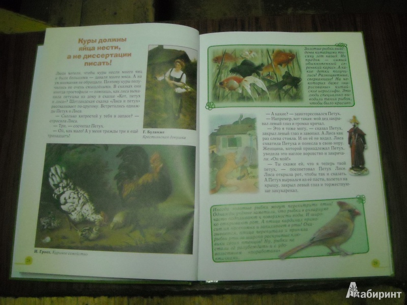 Иллюстрация 46 из 52 для Домашние животные - Светлана Лаврова | Лабиринт - книги. Источник: Лана666