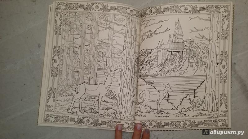 Иллюстрация 36 из 43 для Гарри Поттер. Волшебная раскраска ...