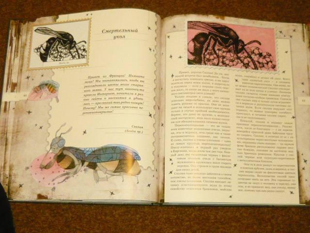 Иллюстрация 66 из 106 для Письма насекомых - Ольга Кувыкина | Лабиринт - книги. Источник: Ромашка:-)