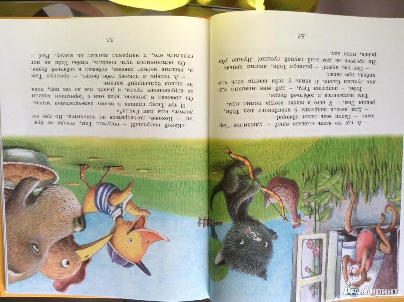 Иллюстрация 5 из 21 для Знаменитый утёнок Тим - Энид Блайтон | Лабиринт - книги. Источник: Газизова  Наталья