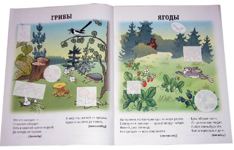 Иллюстрация 1 из 2 для Растения. Книжка-наклейка.   Лабиринт - книги. Источник: *Мария*