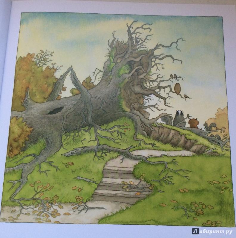 Иллюстрация 6 из 72 для После бури - Ник Баттерворт   Лабиринт - книги. Источник: Карачева  Елизавета