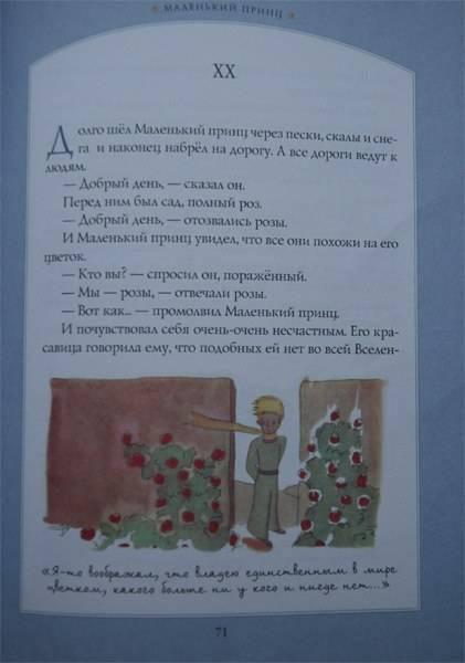 Иллюстрация 90 из 90 для Маленький принц - Антуан Сент-Экзюпери | Лабиринт - книги. Источник: Viva