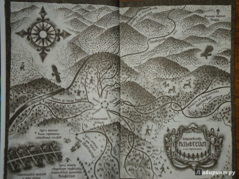 Иллюстрация 18 из 32 для Заклятие эльфов. Нижняя дорога - Даниэль Кирк | Лабиринт - книги. Источник: Danielle