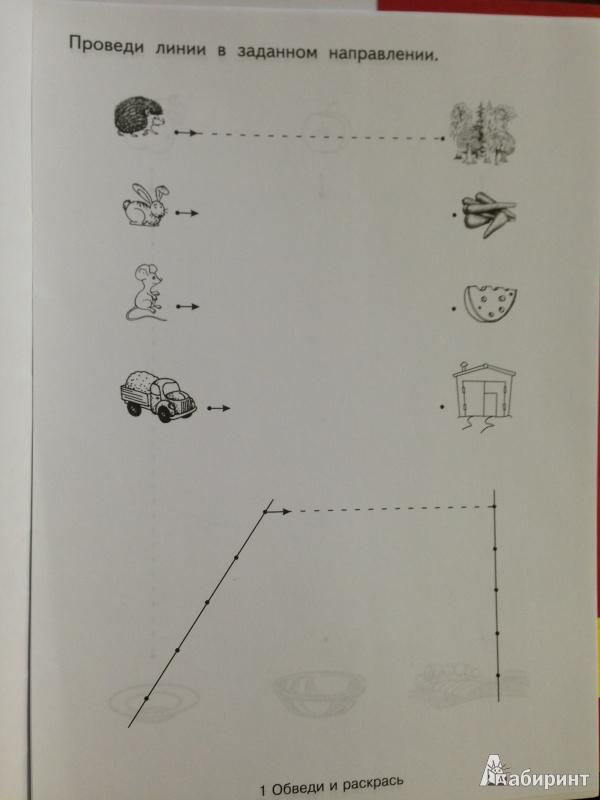 Иллюстрация 3 из 18 для Обведи и раскрась | Лабиринт - книги. Источник: *  Евгения