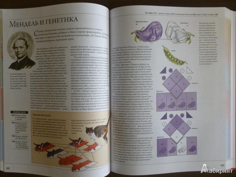 Иллюстрация 12 из 14 для Энциклопедия изобретений и открытий - Аллаби, Бир, Кларк | Лабиринт - книги. Источник: дева