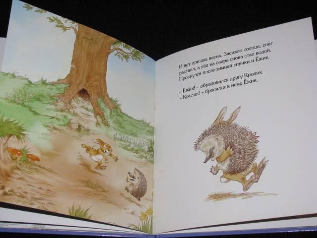 Иллюстрация 26 из 30 для Кусочек зимы - Пол Стюарт   Лабиринт - книги. Источник: Nemertona