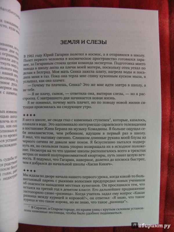 Иллюстрация 12 из 12 для Эмир Кустурица. Где мое место в этой истории? Автобиография - Кустурица   Лабиринт - книги. Источник: manuna007