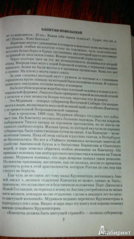 Иллюстрация 8 из 19 для Капитан Невельской - Николай Задорнов   Лабиринт - книги. Источник: Натали