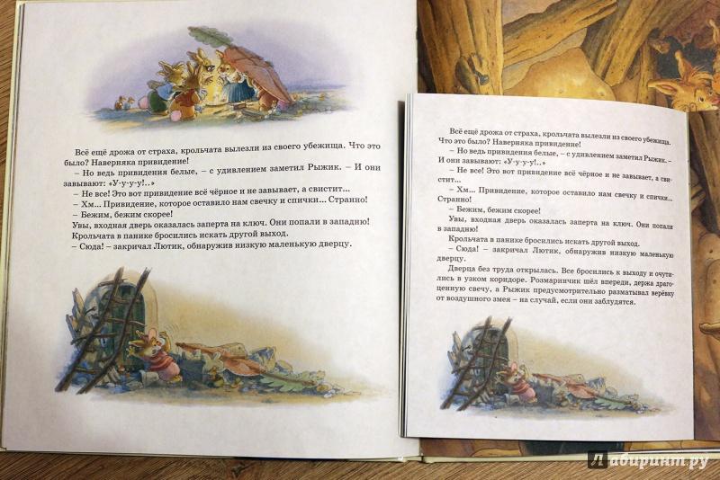 Иллюстрация 29 из 47 для Заколдованный дом - Женевьева Юрье | Лабиринт - книги. Источник: Террил