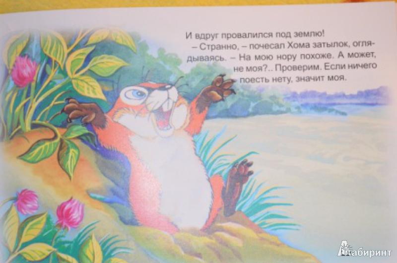 Иллюстрация 15 из 47 для Как Хома на дальнее поле за рощу ходил - Альберт Иванов | Лабиринт - книги. Источник: Moonlight2