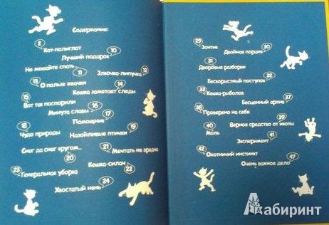 Иллюстрация 4 из 34 для Кешка в центре внимания - Снегирев, Снегирева   Лабиринт - книги. Источник: Mishka_na_Severe