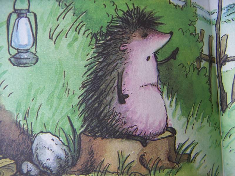 иллюстрации к сказкам ежик укладка пвх-плитки пол