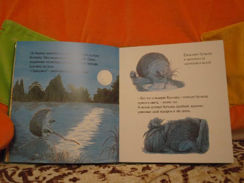 Иллюстрация 26 из 44 для Подарки в День рождения - Пол Стюарт | Лабиринт - книги. Источник: конева  екатерина николаевна