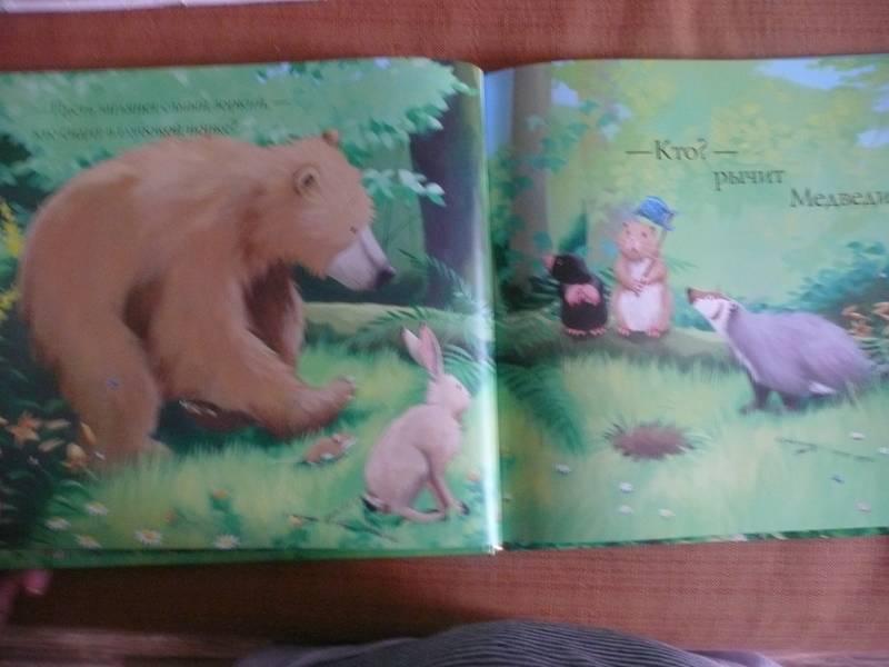 Иллюстрация 14 из 33 для Новый друг Медведика - Уилсон, Чапмен   Лабиринт - книги. Источник: КалинаМалина