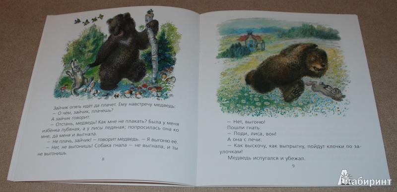 Иллюстрация 15 из 51 для Лиса и заяц - Евгений Чарушин | Лабиринт - книги. Источник: Книжный кот