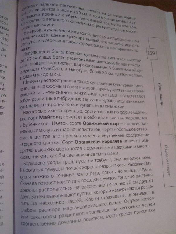 Иллюстрация 19 из 20 для Огород без хлопот - Андрей Туманов | Лабиринт - книги. Источник: Фея Нежности
