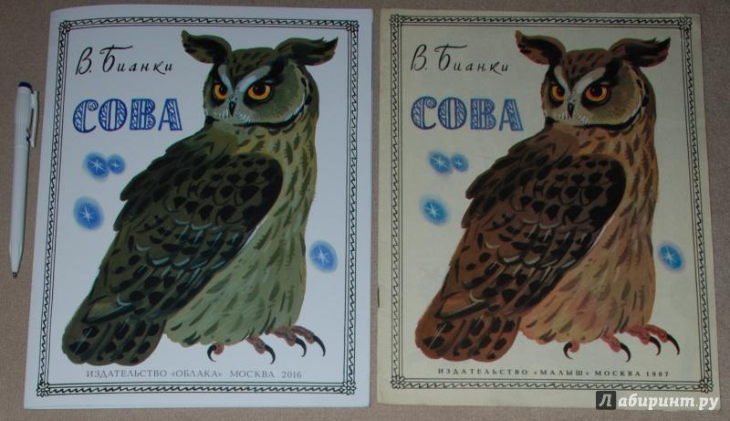 Иллюстрация 25 из 36 для Сова - Виталий Бианки | Лабиринт - книги. Источник: Книжный кот