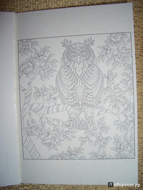 Иллюстрация 6 из 26 для На крыльях счастья. Открытки ...