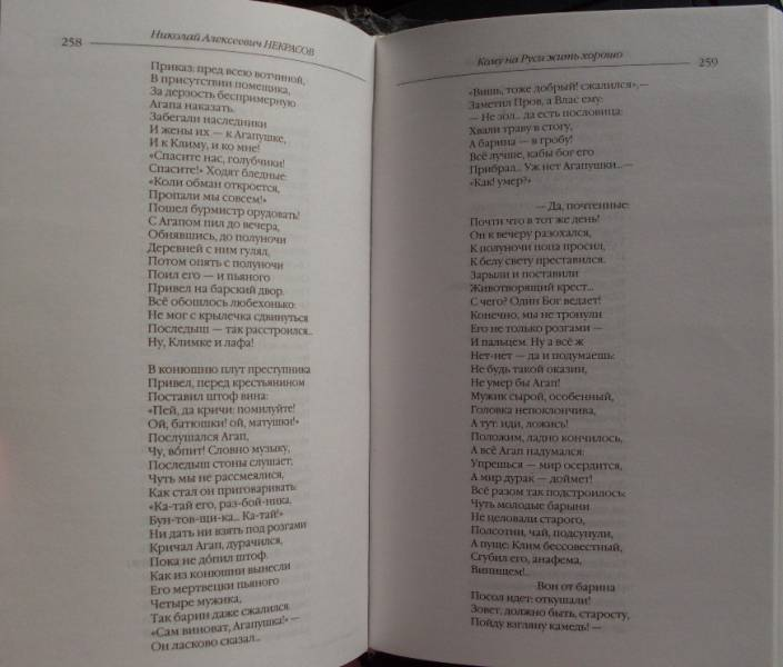 Иллюстрация 8 из 22 для Стихотворения и поэмы. Кому на Руси жить хорошо - Николай Некрасов | Лабиринт - книги. Источник: Сабирзанова  Арина