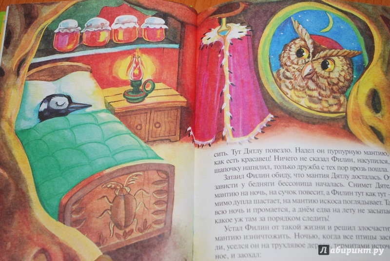 Иллюстрация 22 из 26 для Сказки почемучки, Лесной календарь - Тамара Крюкова | Лабиринт - книги. Источник: Нади