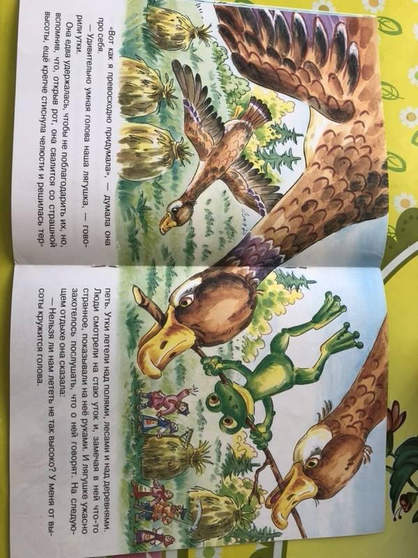 Иллюстрация 11 из 16 для Лягушка-путешественница - Всеволод Гаршин | Лабиринт - книги. Источник: Кудашкина  Татьяна