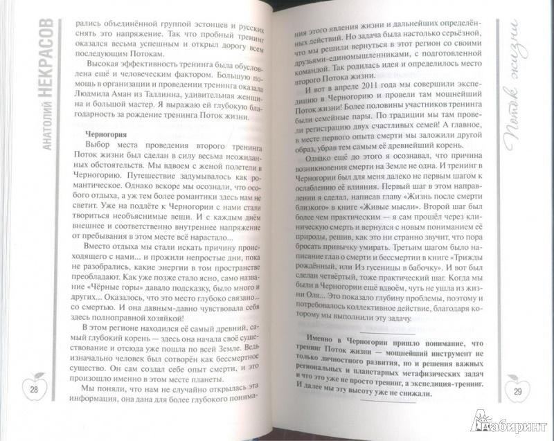 Иллюстрация 6 из 13 для На волне Потока жизни. Книга-тренинг - Анатолий Некрасов | Лабиринт - книги. Источник: Тесла