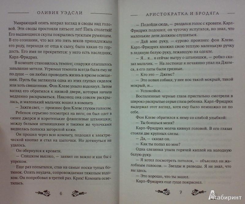 Иллюстрация 5 из 5 для Аристократка и бродяга - Оливия Уэдсли | Лабиринт - книги. Источник: Леонид Сергеев