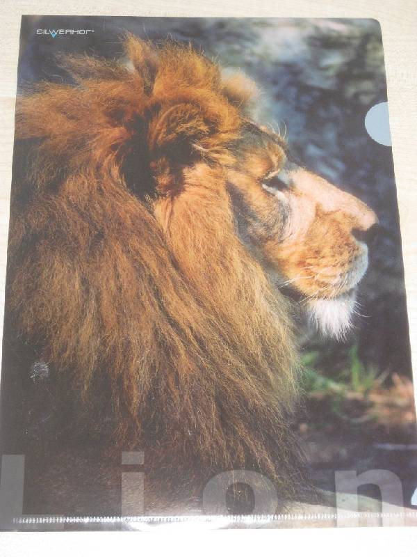 """Иллюстрация 1 из 2 для Папка-уголок (плотная) """"Lion"""" (211010-13)   Лабиринт - канцтовы. Источник: Марийка"""