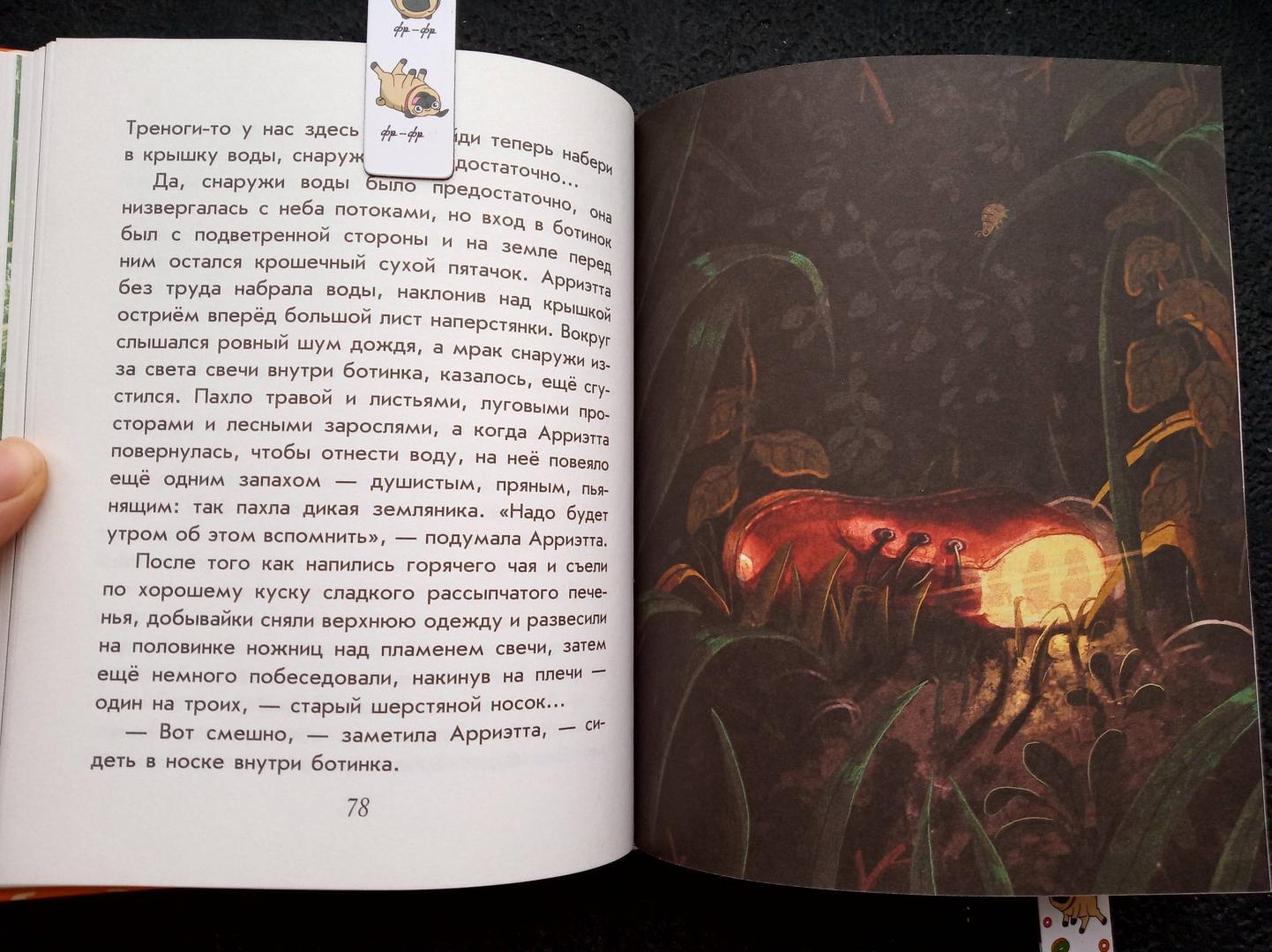 Иллюстрация 52 из 56 для Добывайки в поле - Мэри Нортон   Лабиринт - книги. Источник: RockBaby