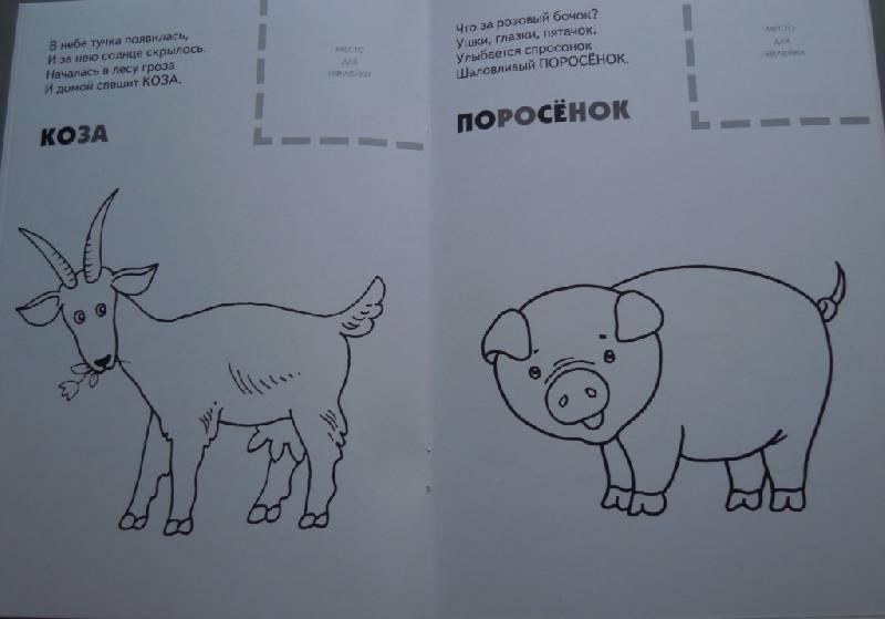 Иллюстрация 8 из 9 для Назови, раскрась, наклей: Домашние животные - Бурмистрова, Мороз | Лабиринт - книги. Источник: Iwolga