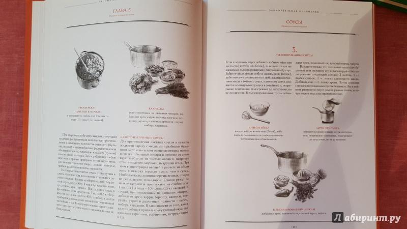 Иллюстрация 19 из 26 для Правила и тонкости кухни - Вильям Похлебкин | Лабиринт - книги. Источник: Ола-ола
