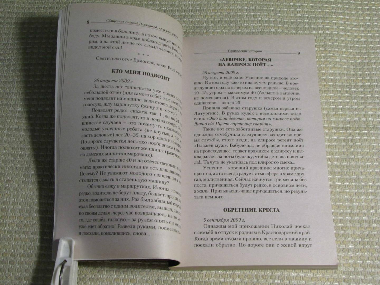 Иллюстрация 16 из 22 для Авва-онлайн. Интернет-записки приходского священника - Алексий Священник | Лабиринт - книги. Источник: leo tolstoy