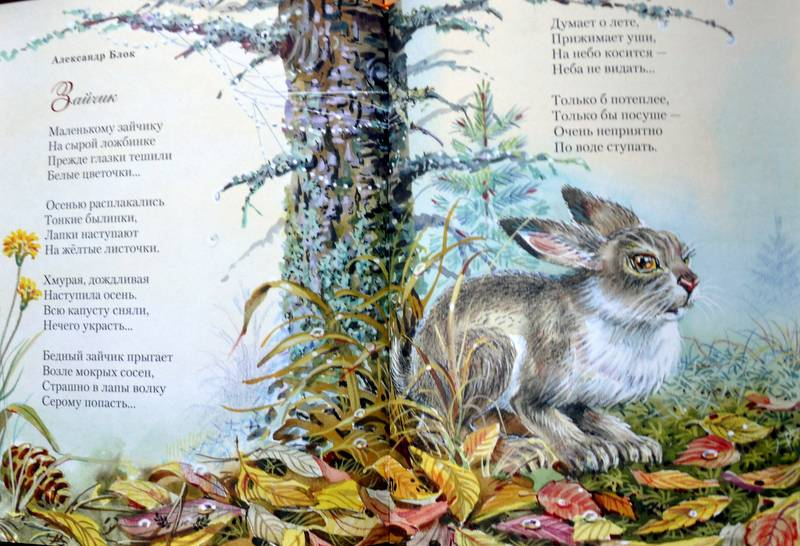 красивые стихи классиков о природе тонких