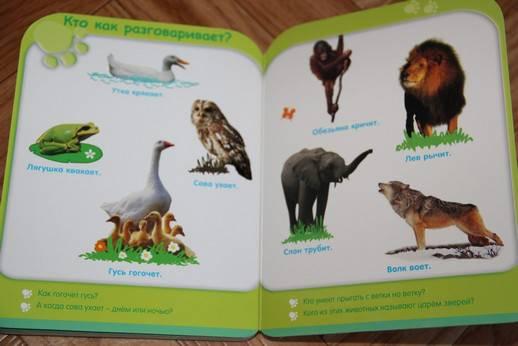 Иллюстрация 7 из 8 для Жизнь животных (от 3-х лет) | Лабиринт - книги. Источник: Vilvarin  Laurea