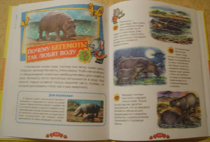 Иллюстрация 7 из 19 для Удивительные животные - Татьяна Комзалова   Лабиринт - книги. Источник: Tatka