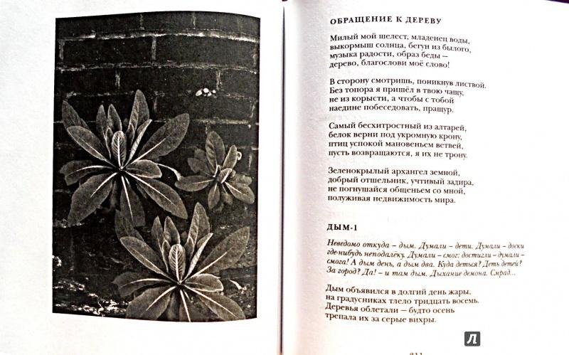 Иллюстрация 13 из 22 для Между Я и Явью: Избранные стихи - Павел Грушко | Лабиринт - книги. Источник: Александр Н.