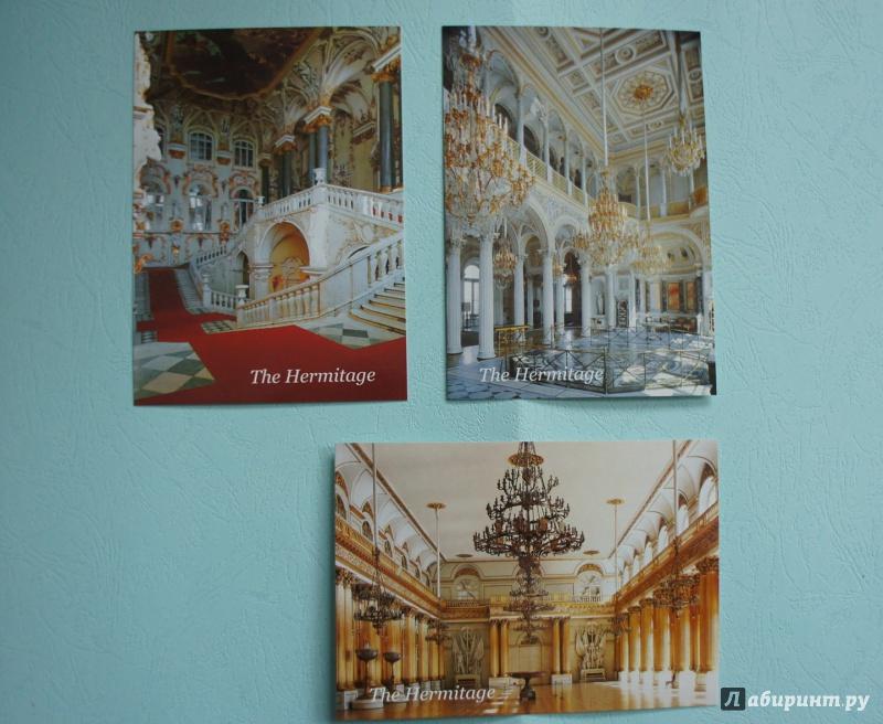 Эрмитаж открытки, картинки животных