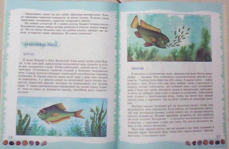 Иллюстрация 17 из 39 для Тайны морского дна: книга для чтения детям - Геннадий Целищев | Лабиринт - книги. Источник: просто так
