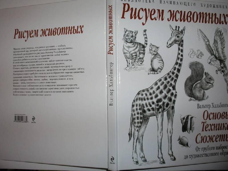 Иллюстрация 7 из 21 для Рисуем животных - Вальтер Хальбингер | Лабиринт - книги. Источник: Tiger.