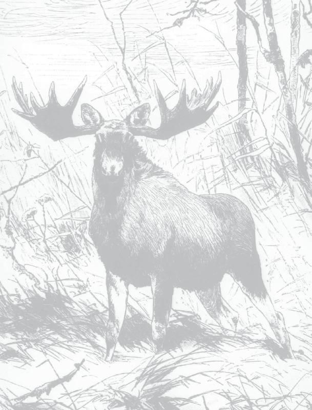 Иллюстрация 3 из 15 для Охота на парнокопытных - Олег Малов | Лабиринт - книги. Источник: Danon