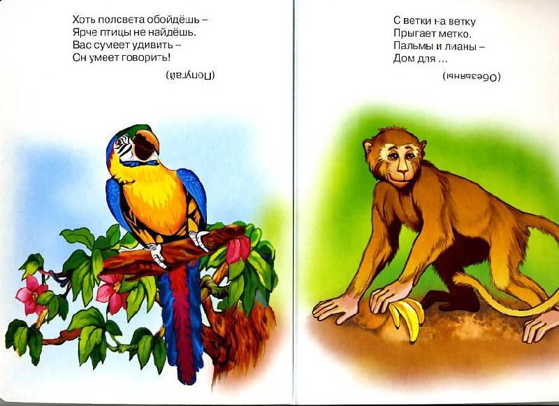 Иллюстрация 1 из 3 для Кто это, отгадай - Оксана Иванова | Лабиринт - книги. Источник: Machaon