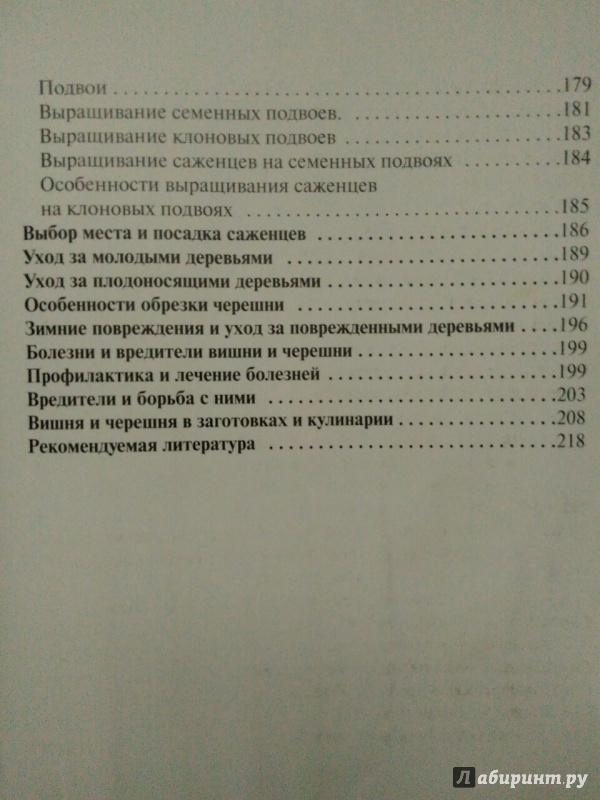 Иллюстрация 17 из 34 для Вишня, черешня. Пособие для садоводов-любителей - Еремина, Юшев | Лабиринт - книги. Источник: Катерина
