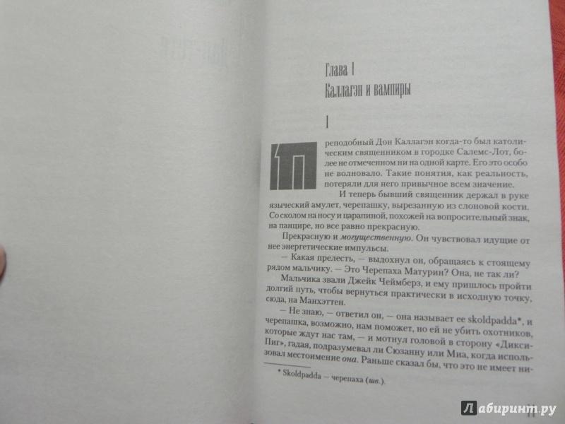 Иллюстрация 19 из 43 для Темная Башня - Стивен Кинг | Лабиринт - книги. Источник: sleits