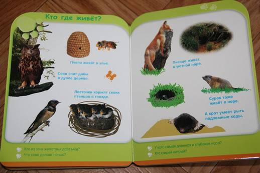 Иллюстрация 4 из 8 для Жизнь животных (от 3-х лет) | Лабиринт - книги. Источник: Vilvarin  Laurea
