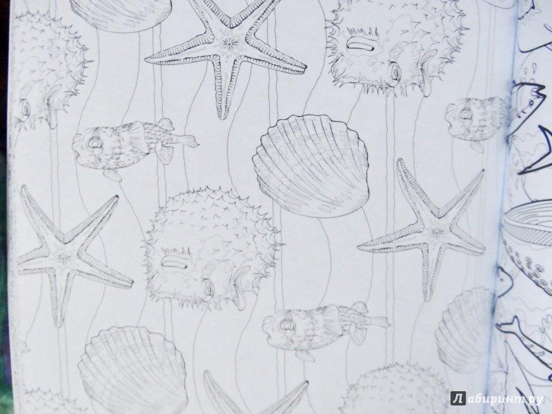 Иллюстрация 18 из 26 для Коралловый риф. Раскраска ...