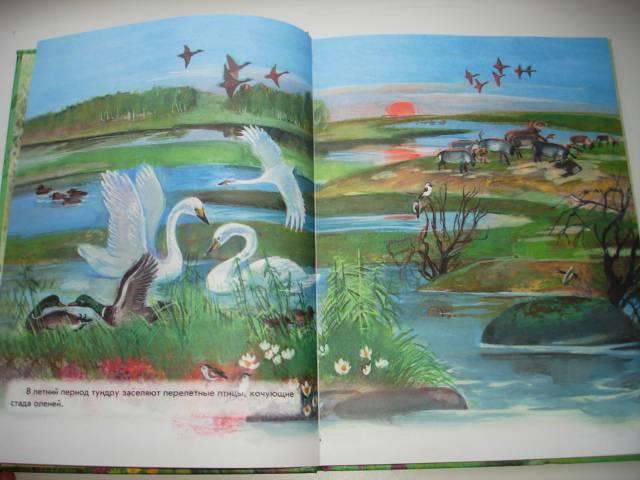 Иллюстрация 14 из 41 для Азбука живой природы - Александр Барков | Лабиринт - книги. Источник: Осьминожка