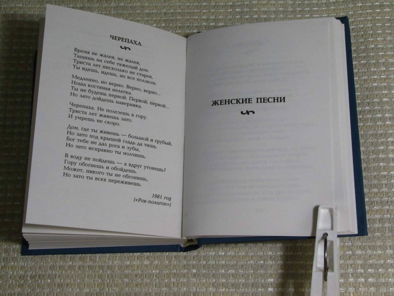 Иллюстрация 21 из 24 для Симфонии двора - Александр Новиков | Лабиринт - книги. Источник: leo tolstoy